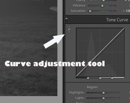 Curve adjustment tool