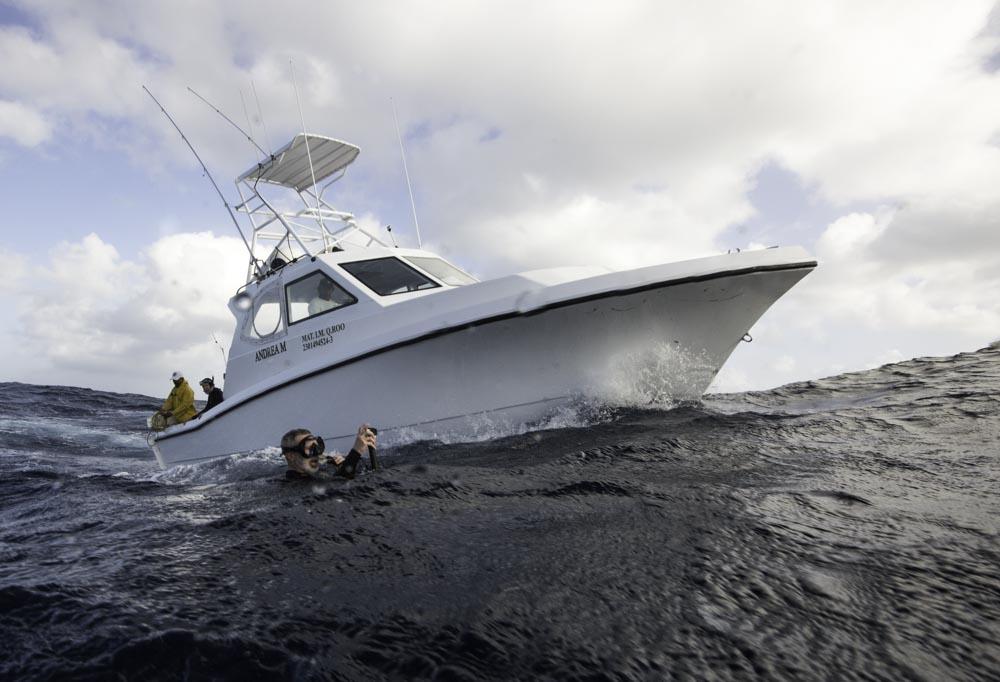 boat for sailfish