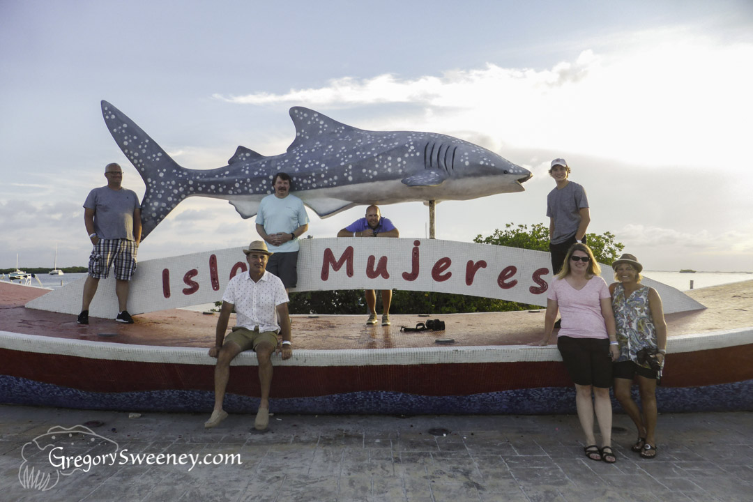 Swim with whale shark small group charter