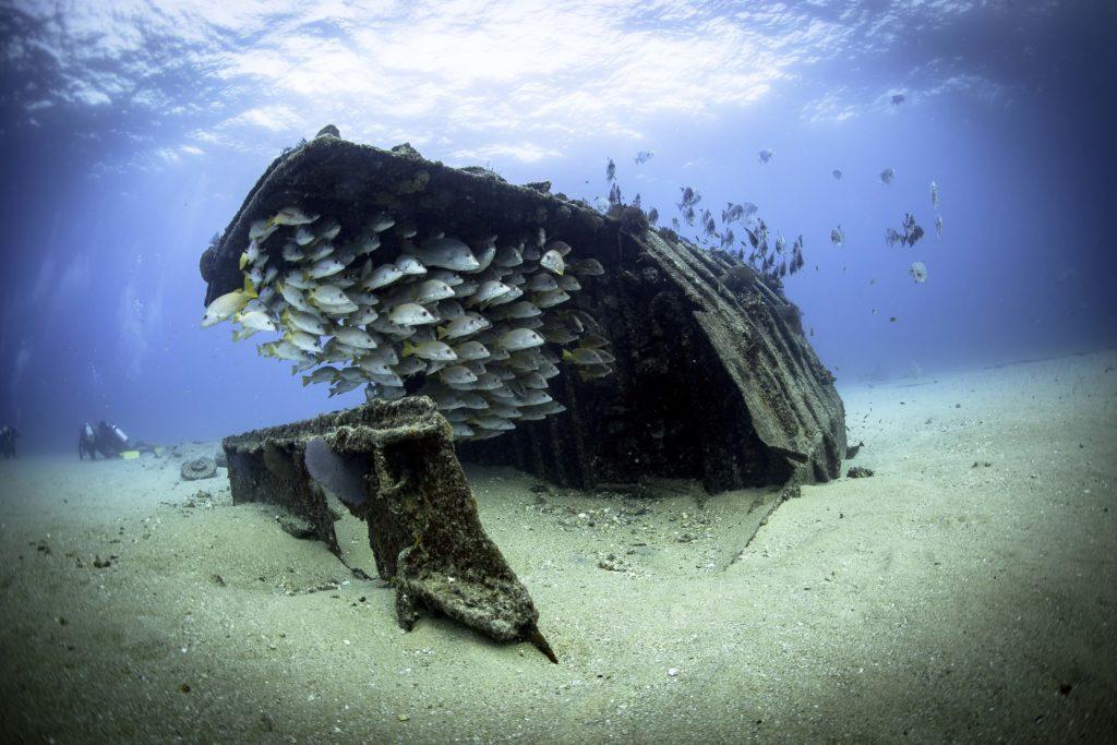 Cabo Pulmo wreck
