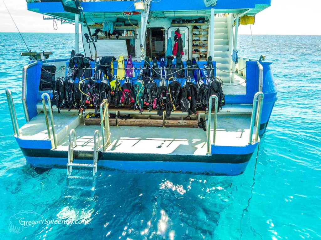 The dive deck of the Dolphin Dream