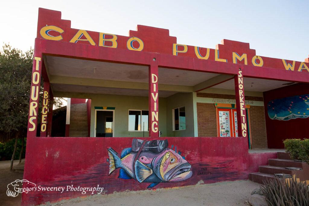Baja Mexico Dive trips