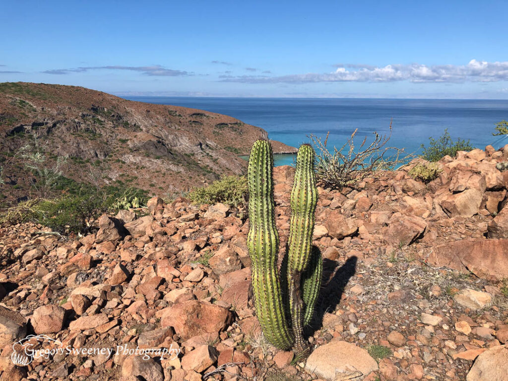 Baja Mexico photography tour